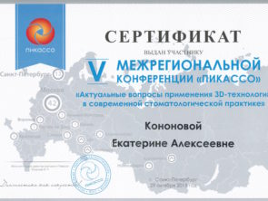 Сертификат Пикассо 05022016 (1)-1